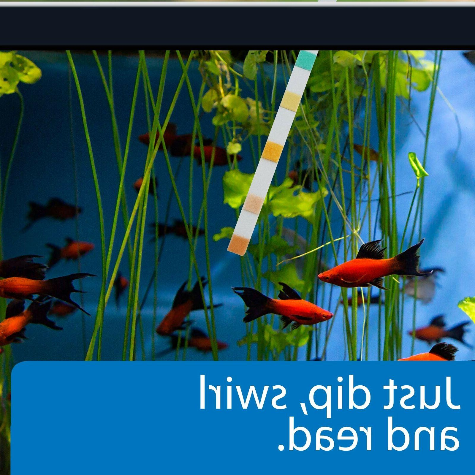 API TEST / Aquarium Strips Aquarium Fish